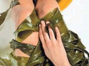 морские водоросли для похудения
