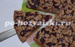 Пирог со сливами на кефире с коричной крошкой