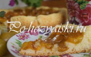 Сливовый пирог в мультиварке — рецепт с фото