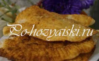 Чебуреки на кефире с мясной начинкой — пошаговый рецепт с фото