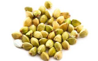 Польза зеленой гречки для похудения