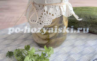 Как заготовить кабачки как грузди на зиму