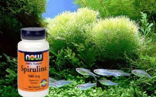 Рекомендации по приему спирулины для похудения и отзывы