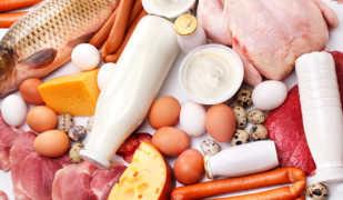 Полезна ли протеиновая диета