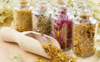 Как принимать травяные сборы для похудения