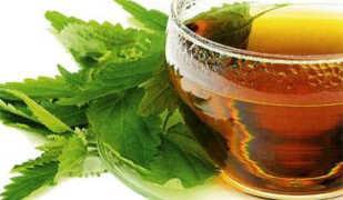 Крапива для похудения: полезные свойства и рецепты