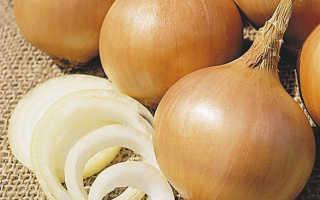 Рецепты на основе лука для похудения