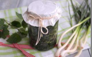 Как заготовить соленый щавель с крапивой и зеленым луком для борща