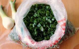 Как заморозить зеленый лук: полезная заготовка на зиму