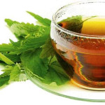 сок крапивы для похудения