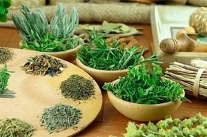 травы для похудения и очищения